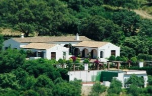 BP boss Tony Hayward's new Costa del Sol villa